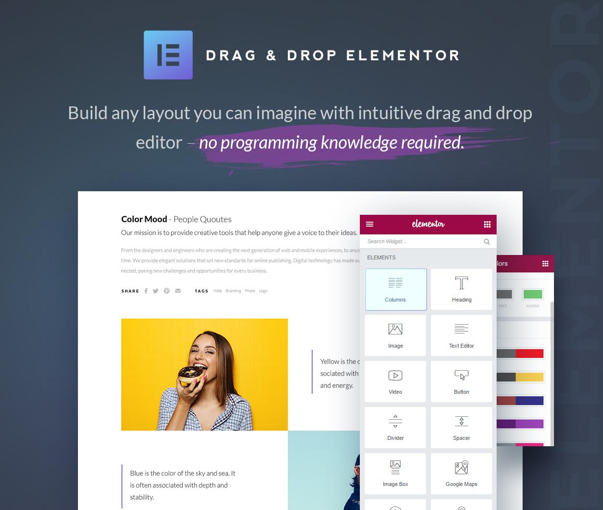 Qudos - Multi-Purpose Elementor WordPress Theme - 3